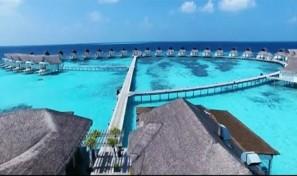 Island Hotel Resort