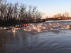 Collegiate rowing team gets attacked by Asian carp