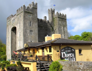 IRELAND - Bunratty Castle & Folk Park