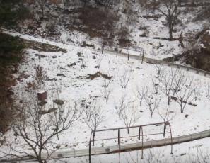 Mutianyu Great Wall Winter Cable Car & Toboggan Ride