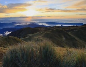 Prelude of Dreams (Mt. Pulag National Park)