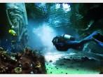 reef world dubai