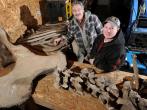 42 mastodon bones found near Battle Creek will be donated to University of Michigan