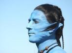 'Avatar' chracter