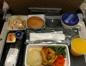 Airplane Food - Economy Vs Business Class On 20 Airlines