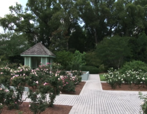 Orlando Tourism : Orlando Tourism: Harry P. Leu Gardens