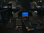 American Museum of Natural History hosts sleepover for grown-ups