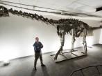 Meet Moabosaurus: Utah's newest dinosaur identified by BYU geologists