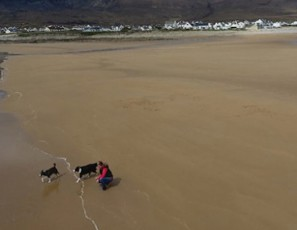 Beach in Ireland reappears on Achill Island 33 years after it was washed away by storm - TomoNews