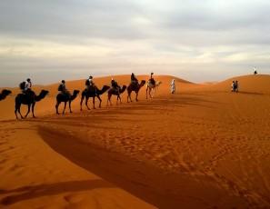 Top 3 Desert Safari Dubai Deals