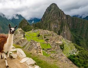 Peru Machu Picchu Lama World Heritage Landscape