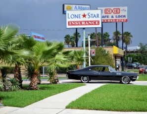 Classic Car And Palm Trees Ford Mustang Black Duster