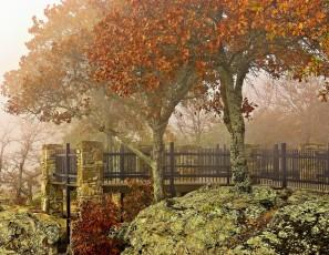 Autumn Petit Jean Fog Mist