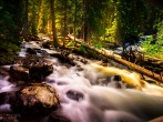 Colorado Stream Creek Water Landscape Forest