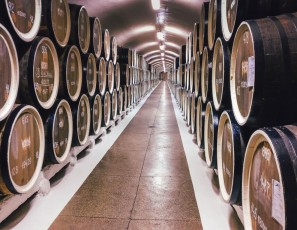 Sniff and Sip: Best Wineries in the US to Visit